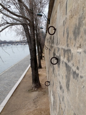 Rings by the Seine