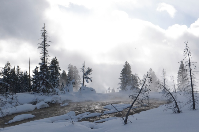 steam from the springs