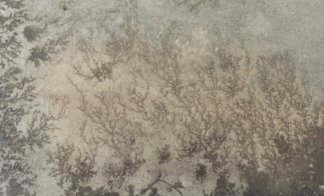 frost on the concrete
